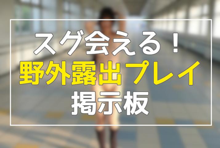 野外・露出プレイ掲示板まとめ5選in2020【すぐ会えるゾ❤】